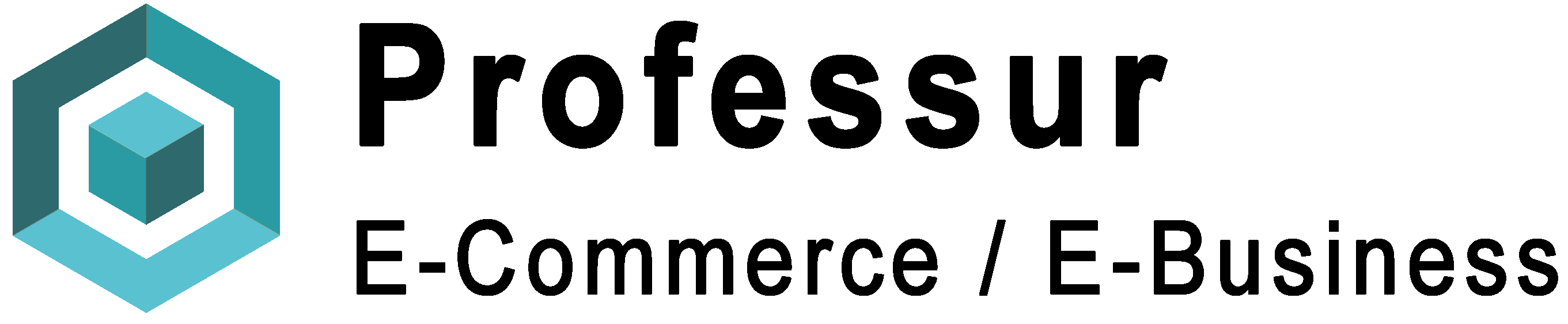 Professur E-Commerce / E-Business